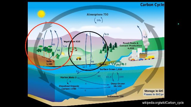Age of earth according to carbon hookup